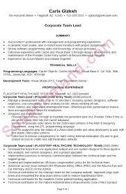 chronological resume example corporate team lead scrum master resume