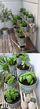 24 of the most beautiful ideas on indoor mini garden to collect homesthetics 20