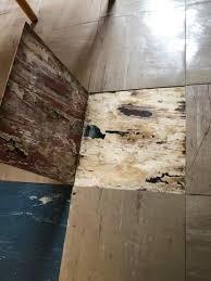 Linoleum bodenbelag kommt wieder in mode. Asbest In Bodenplatten