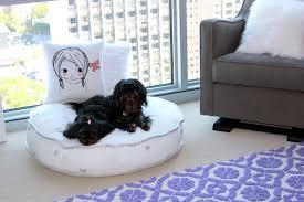 incorporating dogs into your nursery design silver star pouf silver stars floor cushion garden trellis rug