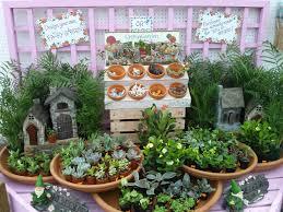 Fairy Garden Pictures Fairy Garden Ruhlig Farms Gardens