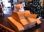 Как танк из картона