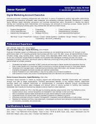 It Director Resume Samples Advertising Account Executive Resume