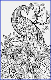 Fairy Tale Coloring Sheets Free Printable Coloring Pages For Adults