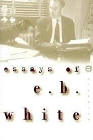 essays of e b white by e b white 394616