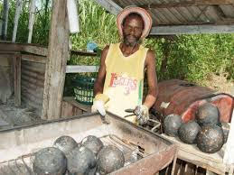Ackee Nutrition Information  LIVESTRONGCOMJamaican Fruit Trees