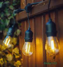 Edison Bulb Patio String Lights Bioluz Led String Lights 48ft Weatherproof 15 Edison Bulbs