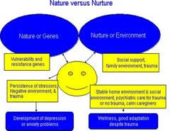 conclusion for nature vs nurture essays  conclusion for nature vs nurture essays