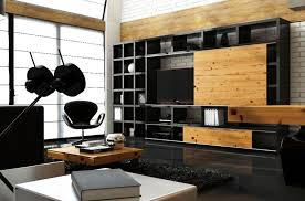 Modern Storage Cabinets For Living Room Black Living Room Cabinet The Best Living Room Ideas 2017