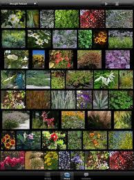Small Picture Garden Design Garden Design with Home Design D Outdoor uamp