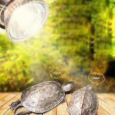 UVB 3.0 sürüngen lamba ampulü kaplumbağa Basking UV ampuller ısıtma lambası  amfibi kertenkele sıcaklık kontrol cihazı Satış / Alışveriş Merkezi