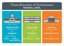 Bundle Of 3 Establishing The Us Government The Three Branches Of Government