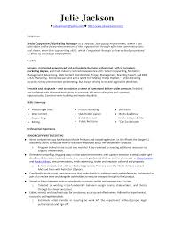 resume example monster