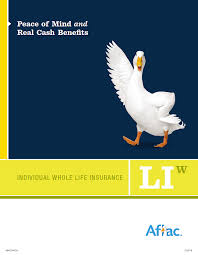 aflac monthly direct rates