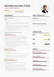 Management Resume Successful Resume Nonprofit Management Enhancv 52