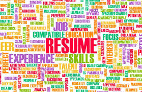 Free Resume Evaluation Custom Free Resume Evaluation Is It Worth Anything Rising Star Resumes
