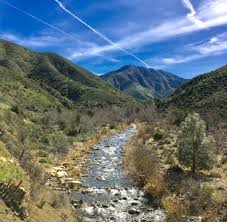 a w s day still amazed yesterday was international women s day and i chose to spend it hiking in the santa barbara mountains some very strong women a couple of us sported