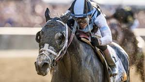 2015 Belmont Stakes Chart Profiling The Belmont Stakes Winner In Non Triple Crown Year
