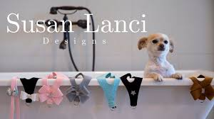 Designer Dog Clothes And Accessories Welcome Best Pet Store Designer Dog Clothes Dog Collars