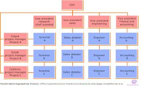 Matrix Organizational Structure How It Works Ifioque Com