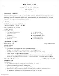 A Good Summary For A Resumes Professional Summary Example For Resume Resume Creator Simple Source