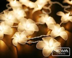 Lovely 20 White Frangipani Flower Lights String Lights Fairy Lights Christmas  Lights Wedding Party Lantern Lights Bedroom Wall Home Nursery Decor