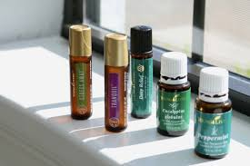young living essential oils desk reference ayresmarcus private collection 1st and 2nd edition