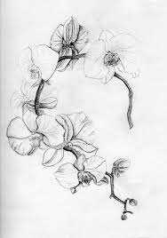 Orchidee By Migas90 Tattoo тату с орхидеями татуировка цветы и