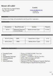 professionalresumeformats162 download resume format freshers resume formats