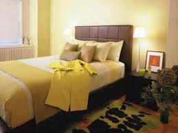 Bedroom Paint Color Combinations Wall Paint Color In Master Bedroom Combination Home Combo