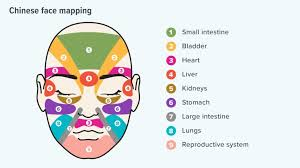 Tcm Time Chart Face Mapping Can You Use It To Improve Your Skins Health