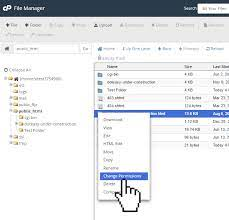 cpanel file manager modify file or