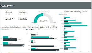 Entry 7 By Juliasr6 For Company Budget Planning Monthly Actuals