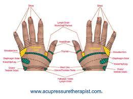 Hand Reflexology Chart Reflexologist Map Acupressure