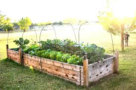 build garden beds raised bed how ideas the plans easy