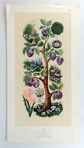 Vintage SOPHIE PORTER Fruits and Flowers Nature Fountains Lithograph Print  #Z257 | eBay