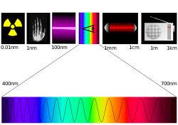 Реферат по физике светопреломляющая система глаза Восприятие  Реферат по физике светопреломляющая система глаза Восприятие длины световой волны учащаяся 10 класса Истомина Наталья