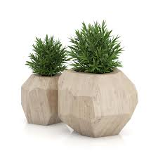 plants remarkable green round indoor planters for trees fearsome
