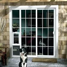 flap pet door medium size of patio pacific replacement best insulated dog freedom pass endura for