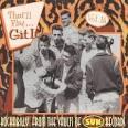 That'll Flat Git It!, Vol. 16 album by Ray Harris
