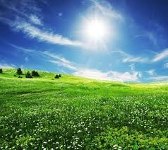 grass and sky backgrounds. Unique And Grass Sky Picture 2 In Grass And Sky Backgrounds T