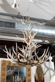 large american vintage antler chandelier holding 6 candlesticks electrified