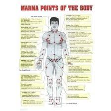 Marma Chart Marma Therapy Chart Set Of 3 Ayurvedic Doctor Ayurveda