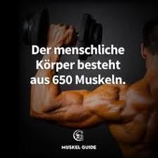bodybuilding fettabbau