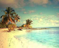 Seashore Background Hd Wallpaper Download