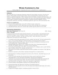Some Resume Like Interior Design Resume Examples