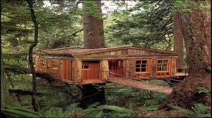 Pete Nelson Treehouse Master New Interview with Pete Nelson Of