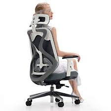 ergonomic office chairs with lumbar support. Delighful Lumbar Hbada Ergonomic Office Mesh Chair With Lumbar Support Adjustable Seat  Cushion Headrest And Armrest Inside Chairs With Support C