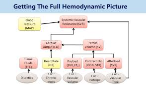 Hemodynamics New Era In Critical Patient Management