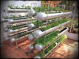 how to make rooftop vegetable garden in india best image voixmag a roof ideas brokohan page